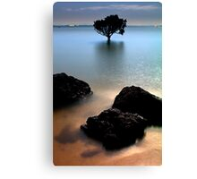 Night at Tenby Point Canvas Print