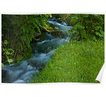 Ozarks Stream at Doling Park Poster