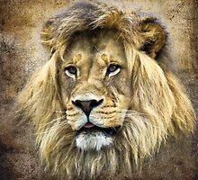 Lion King by SteveMcKinzie