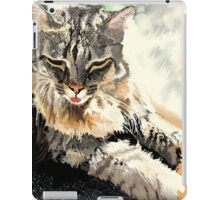 Manda, Basking in Sunlight iPad Case/Skin