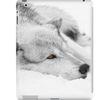 Wolf Laying in Snow iPad Case/Skin