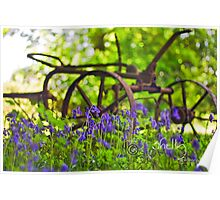 Bluebell Countryside Poster