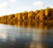 View on the autumn river by igorsin
