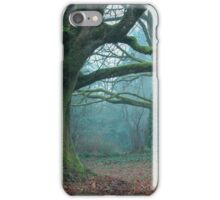 Enchanted Winter  iPhone Case/Skin