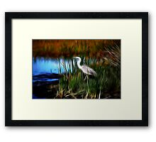 fractalius marsh-Lake Woodruff NWR Framed Print