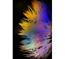 psychedelic whisper Photographic Print