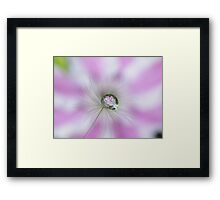 Clematis in a drop Framed Print