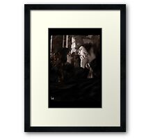 Gothic Photography Series 084 Framed Print