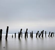 Spurn Guards by SteveMG