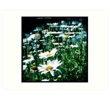 Field of flowers TTV Art Print