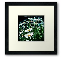 Field of flowers TTV Framed Print
