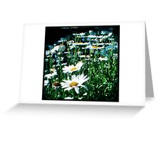 Field of flowers TTV Greeting Card