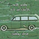 Sunday Drive Haiku Art Print by reflekshins