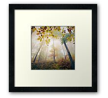 Highness Framed Print