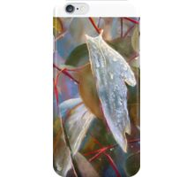 Drought Relief iPhone Case/Skin