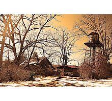 Wood House Photographic Print