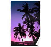 coconuts - Mexico Poster