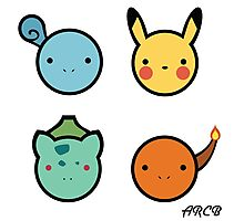 Cute Starter Pokemon Photographic Print