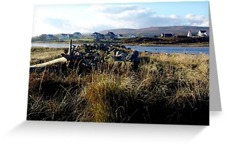 Morning,Margaree Harbour by George Cousins