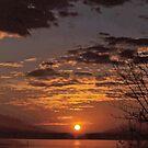 Lake Seminole Sunrise by WTBird