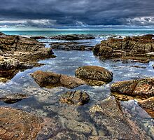 Tide Pool by Cecily McCarthy