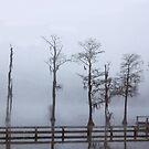 Foggy Millpond Morning by WTBird