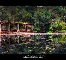 Araluen Botanic Park by tbasten