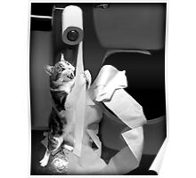 HUMEROUS MISCHIEVIOUS CAT-(FELINE) BATHROOM--JOURNAL-- PICTURE,PILLOWS AND OR TOTE BAGS ECT..DOUBLE THE PLEASURE DOUBLE THE FUN LOL!! Poster