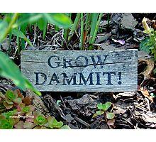 """Gardening Directions"" Photographic Print"