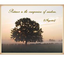 Patience is the Companion of Wisdom Photographic Print
