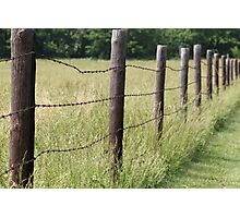 Along the Fence Photographic Print