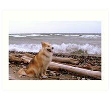 Gracie, Lake Superior and the huge winds at Pebble Beach Art Print