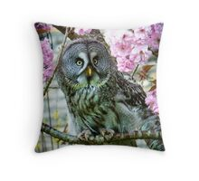 Great Grey Owl in the blossom Throw Pillow