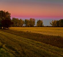 Golden hour on the prairies by Neil Speers