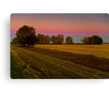 Golden hour on the prairies Canvas Print