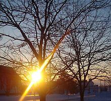 SunSettingOverASmallTownDream by Workmanship