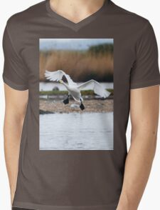 Bewick's swan about to land on water with wings outspread Mens V-Neck T-Shirt