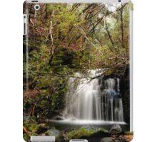 Strickland Avenue Falls,South Hobart,Tasmania iPad Case/Skin