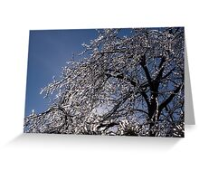 Sparkling Icy Tree - Mother Nature's Decoration Greeting Card