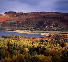 Derwent Water and Borrowdale Valley, Cumbria by Craig Joiner