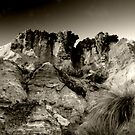 Desperation Canyon by Thomas Anderson
