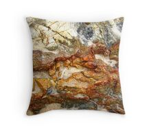 Valley of the Storms Throw Pillow