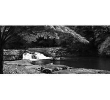 Gardener Falls Walk - Maleny - Hinterland - Sunshine Coast - Queensland - Australia Photographic Print