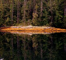 serious reflections by KaPaphotography