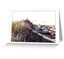 Dunes & Driftwood - Postcard Greeting Card