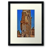 Old Cow - Persepolis - Iran Framed Print