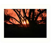 Queensland Sunset Art Print