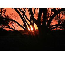 Queensland Sunset Photographic Print