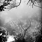 daydream  by Dorit Fuhg