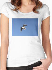 Little Gull In Flight Women's Fitted Scoop T-Shirt